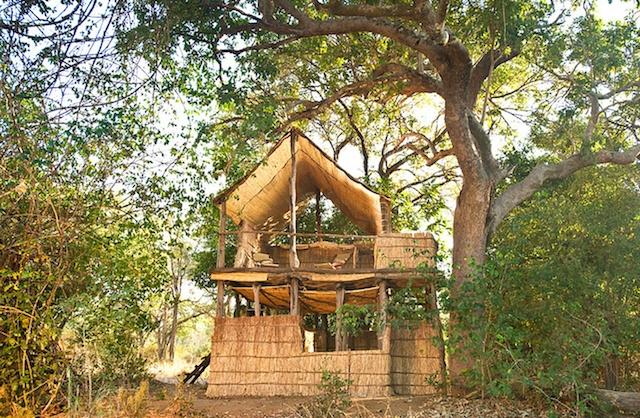 Primal-Pathways-South-Luangwa-Walking-Safari-Chik-Camp.jpg