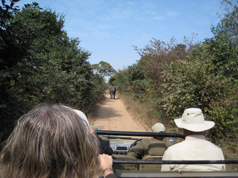 Zambia: decisions that matter