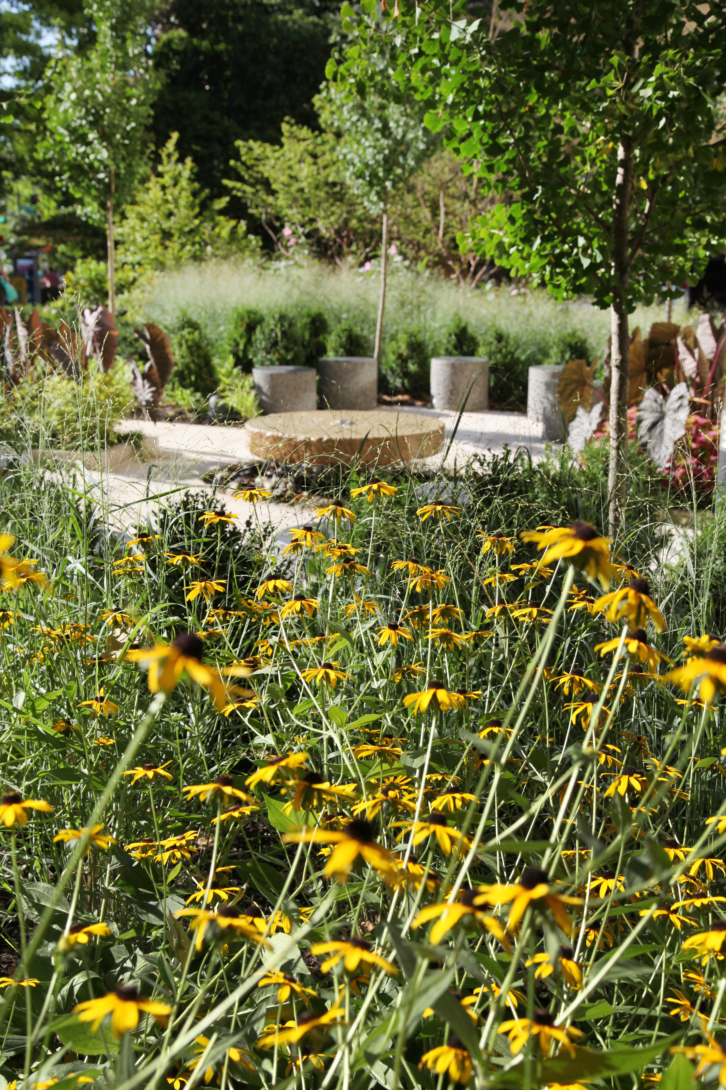 Project Location:  Washington, DC (North Cleveland Park)  Completion:  Summer 2015  General Contractor:  Denchfield Landscaping  Image By:  Moody Graham