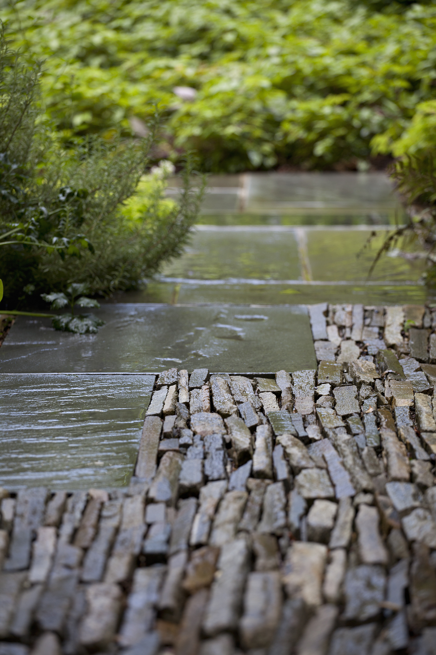Project Location: Washington, DC (Forest Hills)  Completion: 2010  Landscape Contractors: Quarry Aquatics, Evergro Landscaping  Project Architect: Cunningham Quill  Primary Material Palette: bluestone  Photos By: Allen Russ