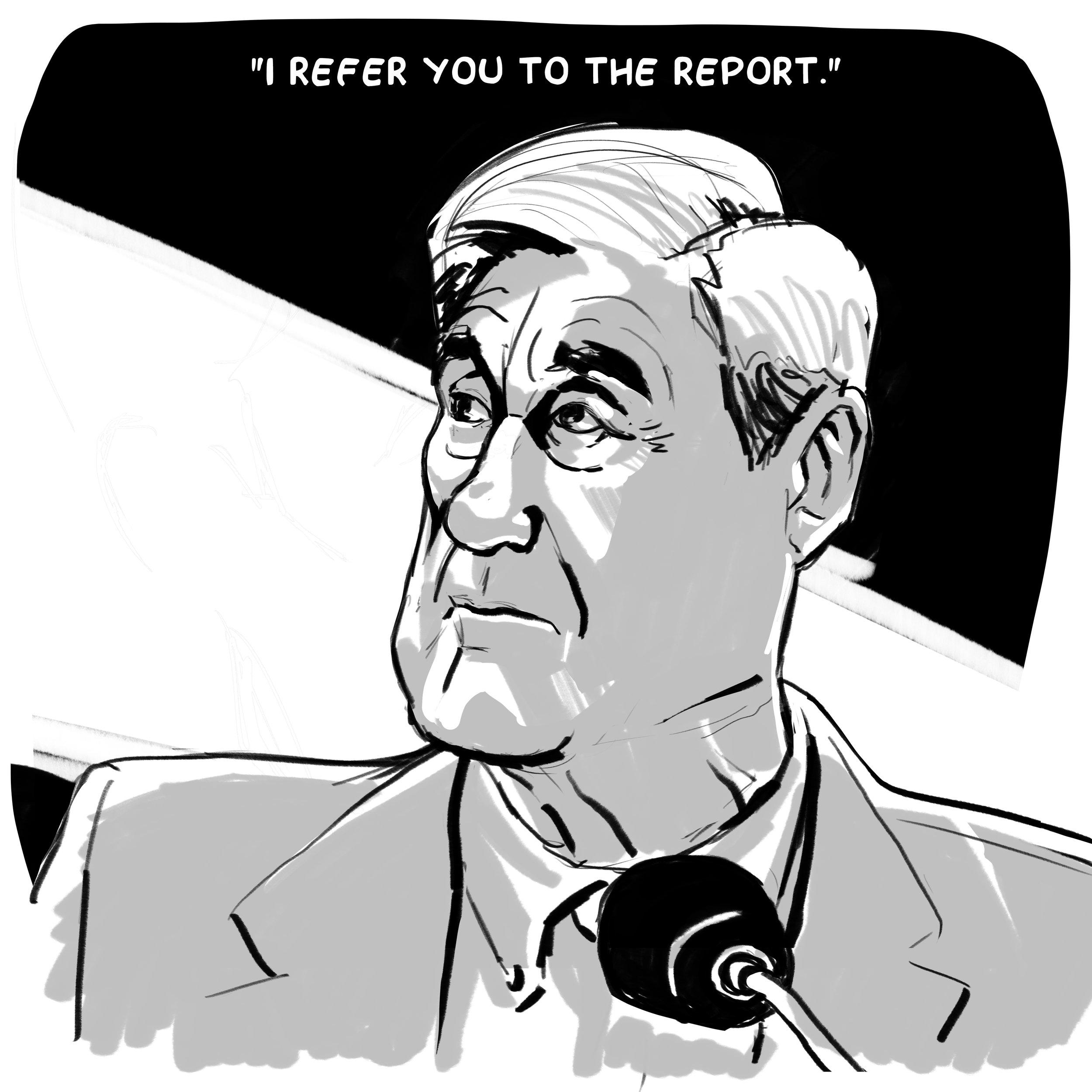 MuellerHearing_02.jpg