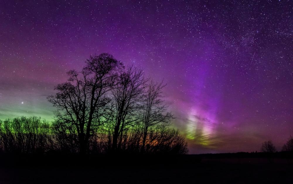 """ Aurora Borealis in Estonia "" by  Kristian Pikner , licensed under  CC BY-SA 4.0 ."