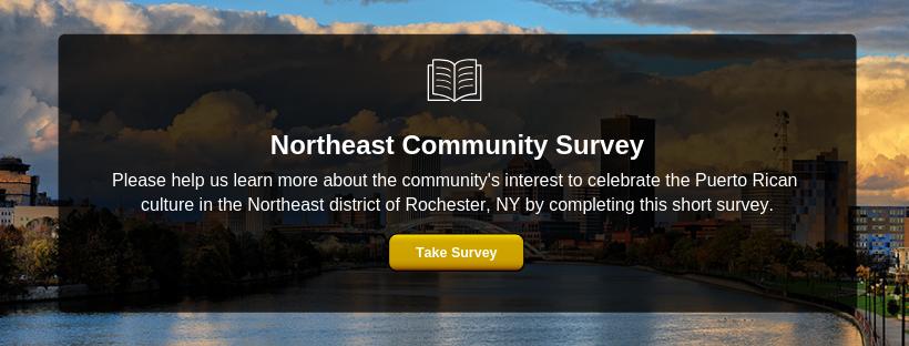 Northeast Community Survey.png