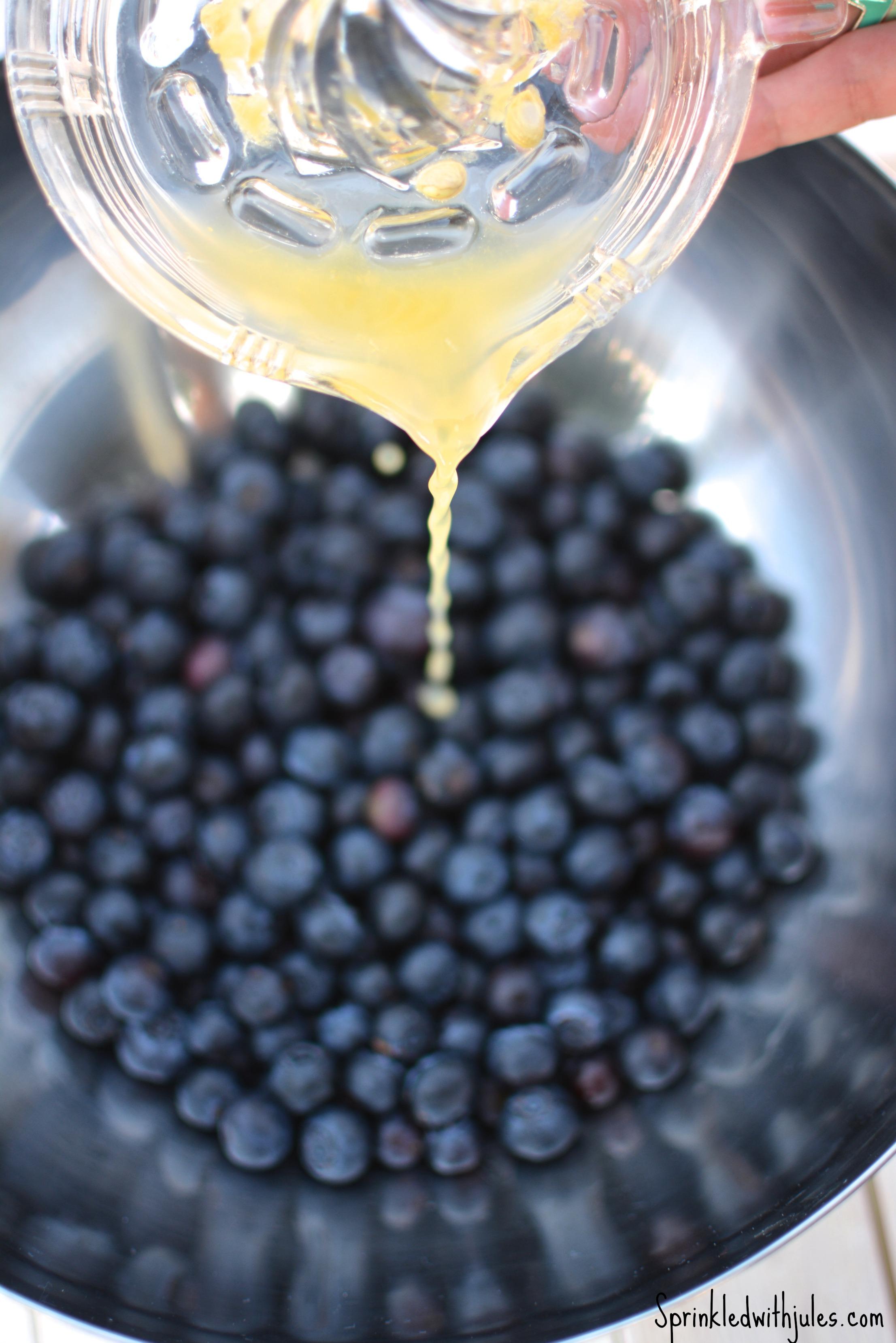 Blueberry Cobbler / Sprinkled With Jules