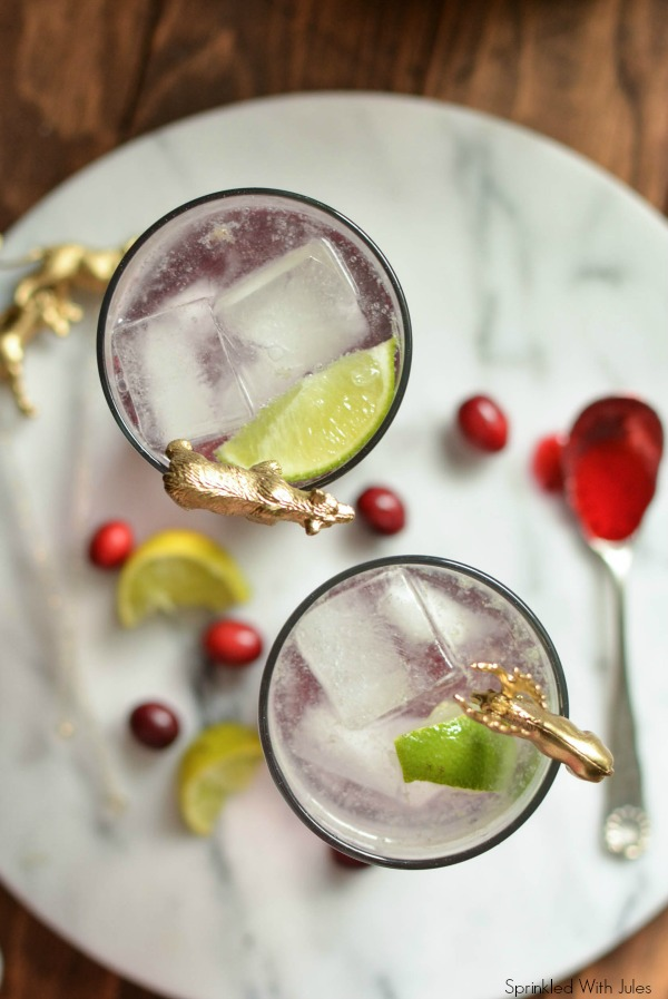 Cranberry Shrub (Drinking Vinegar) / Sprinkled With Jules