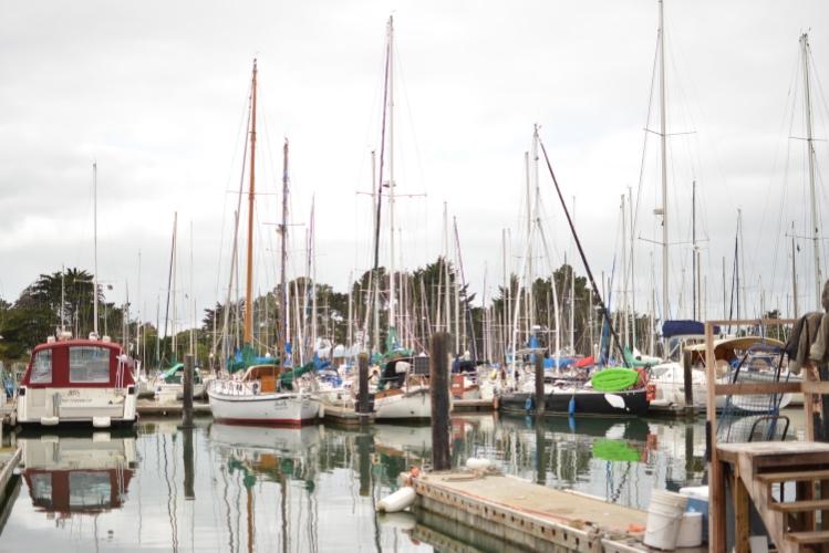 berkeley marina, california