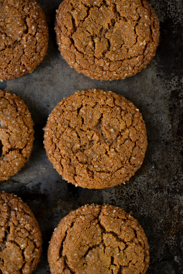 chewy ginger molasses cookies / sprinkledwithjules.com