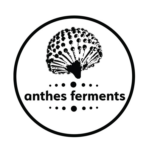 Anthes-Ferments.jpeg.jpg