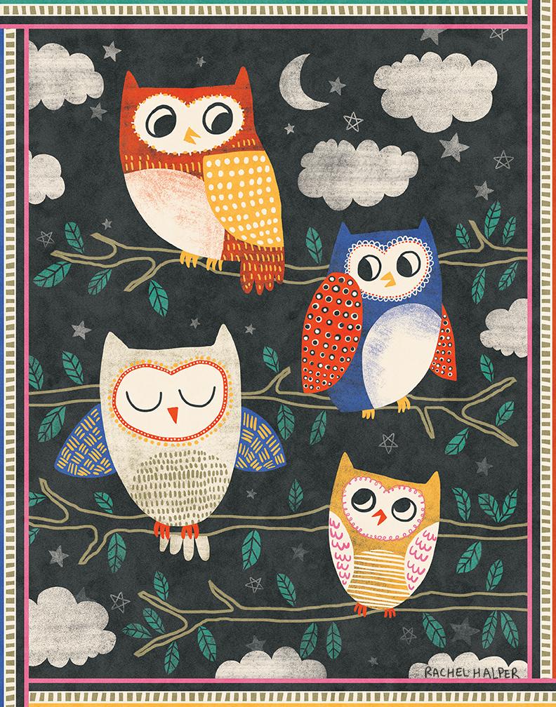 owl_allan_web.jpg