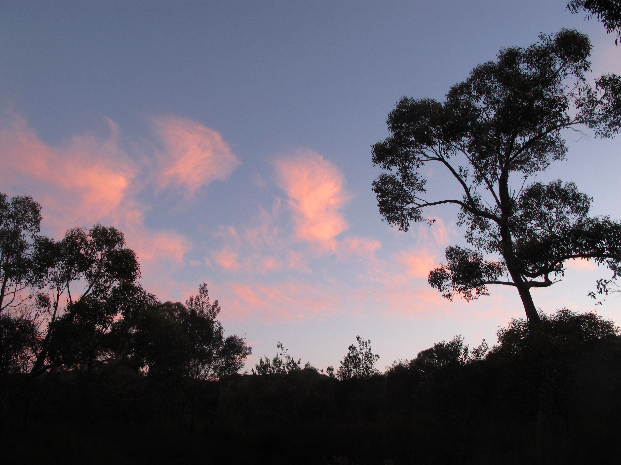 Grampians campsite sunset, summer 2012.
