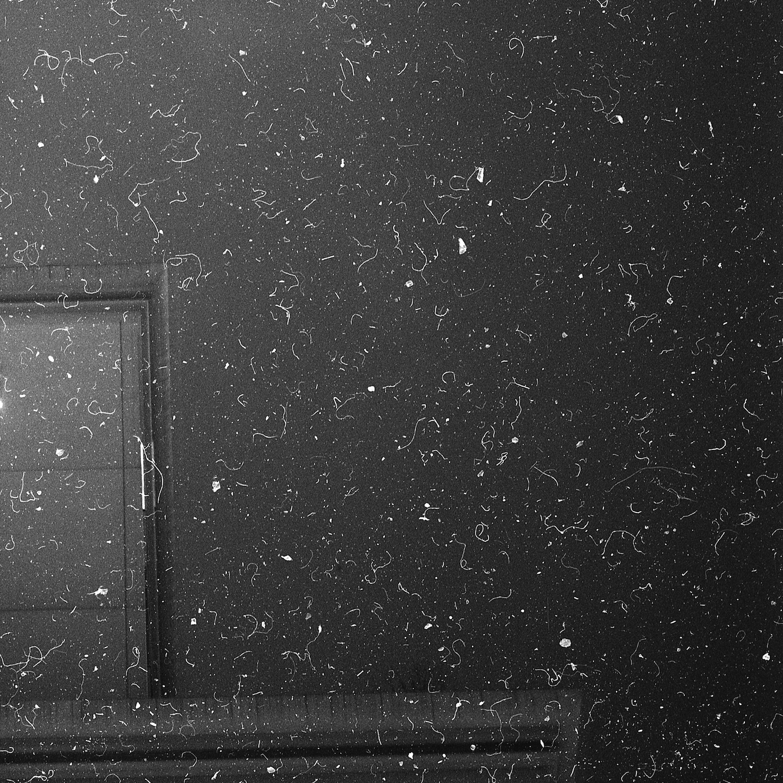 Cosmic Dust #Q4407740