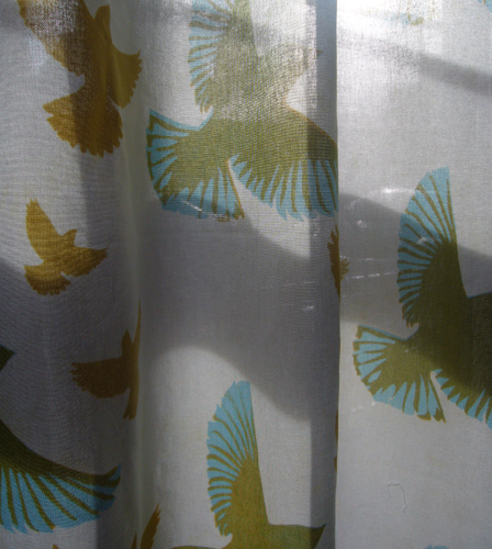 sparrows curtain 2009