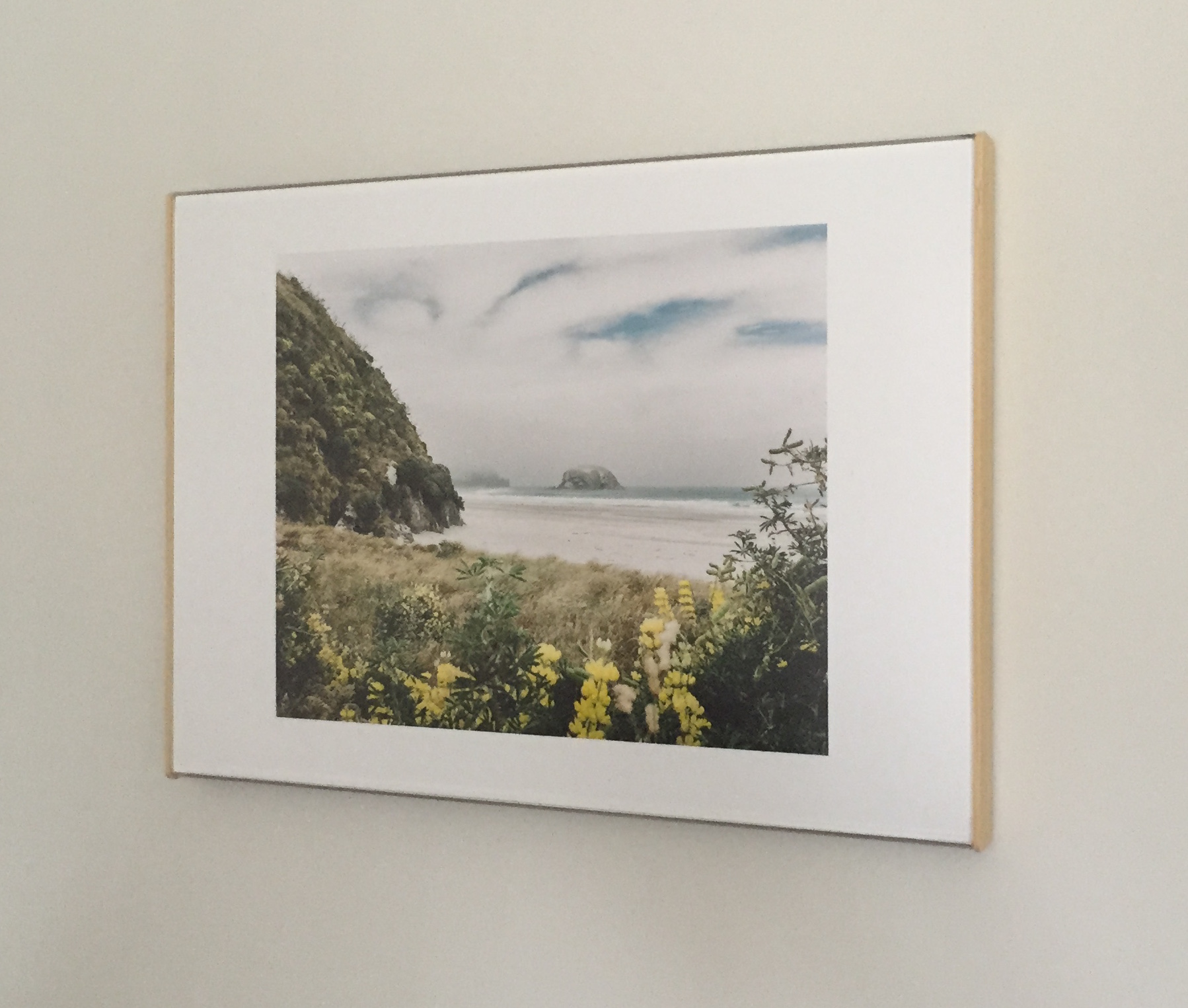 """""""Allans Beach"""" displayed in Curator Clip"""
