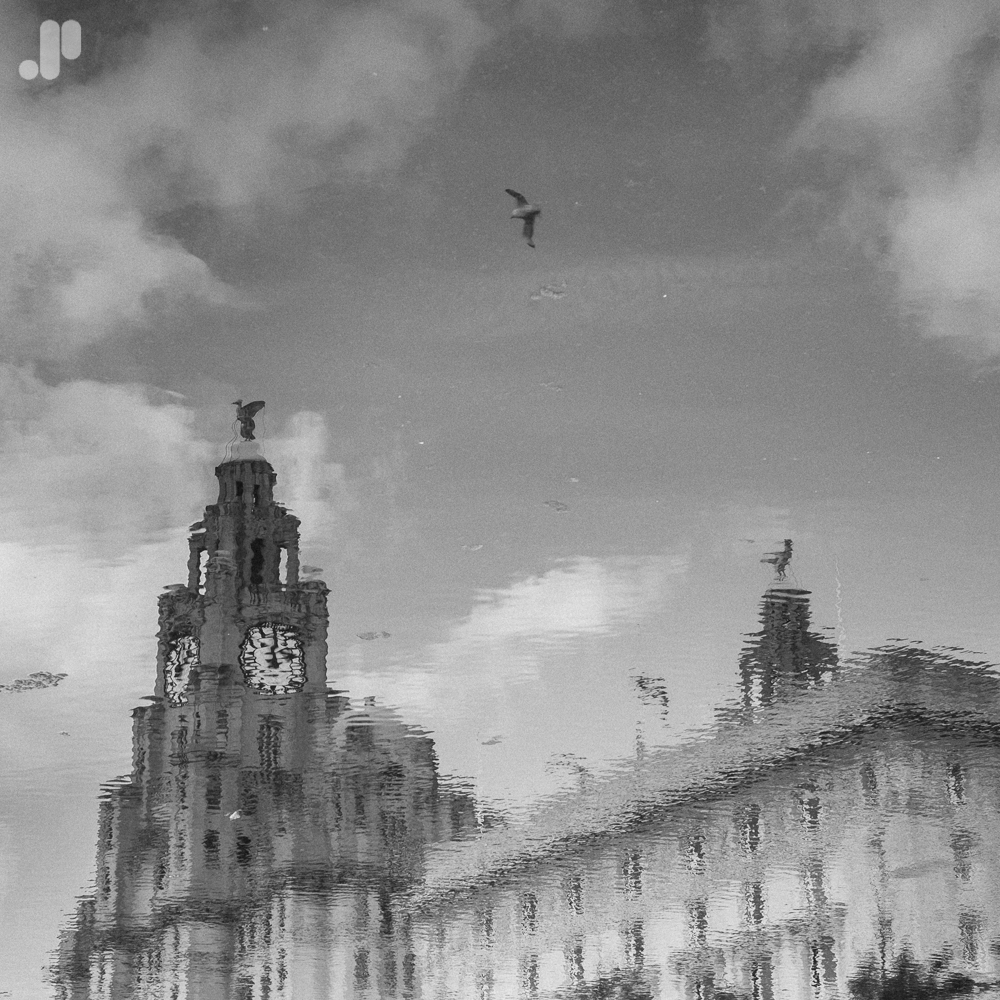 'The Royal Liver and Cunard Buildings'
