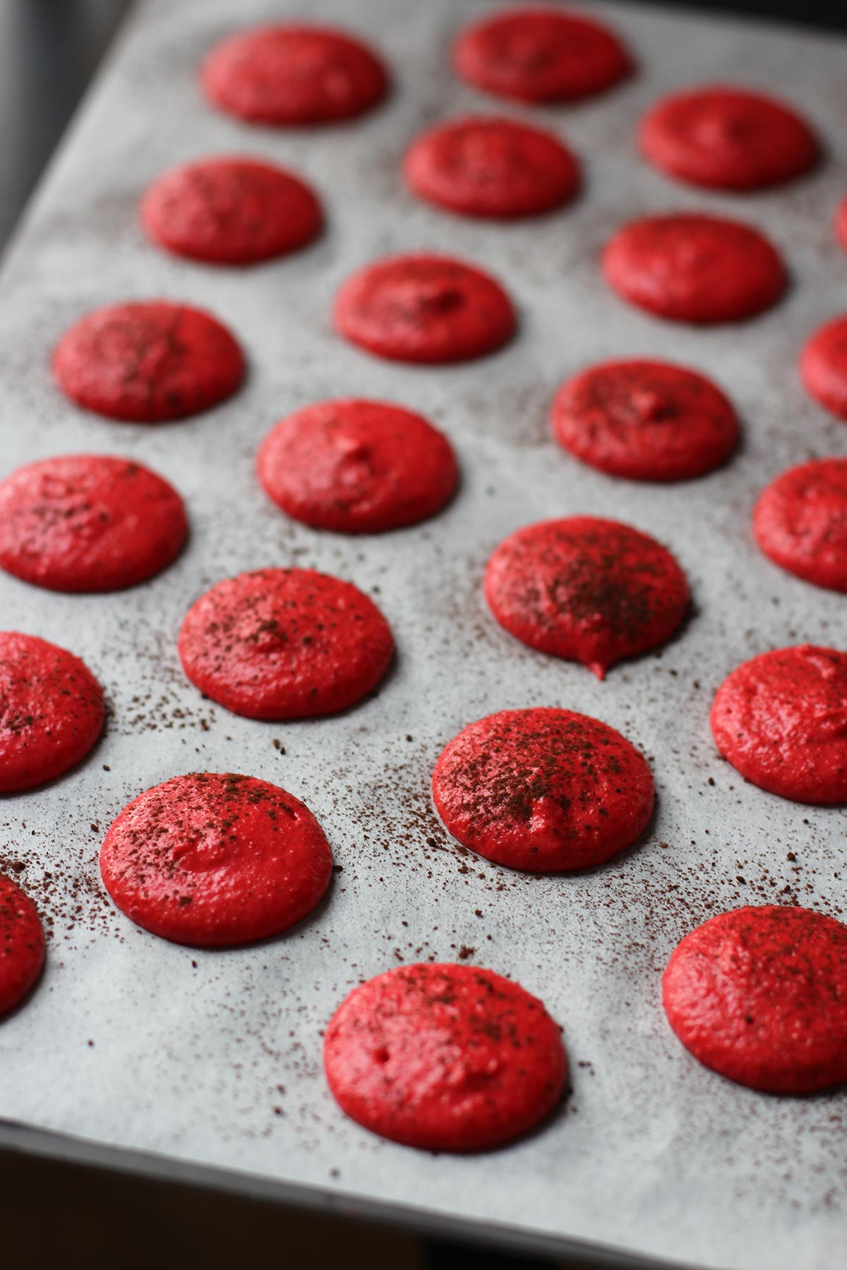 Macarons-choco-framboise_8235-3.jpg