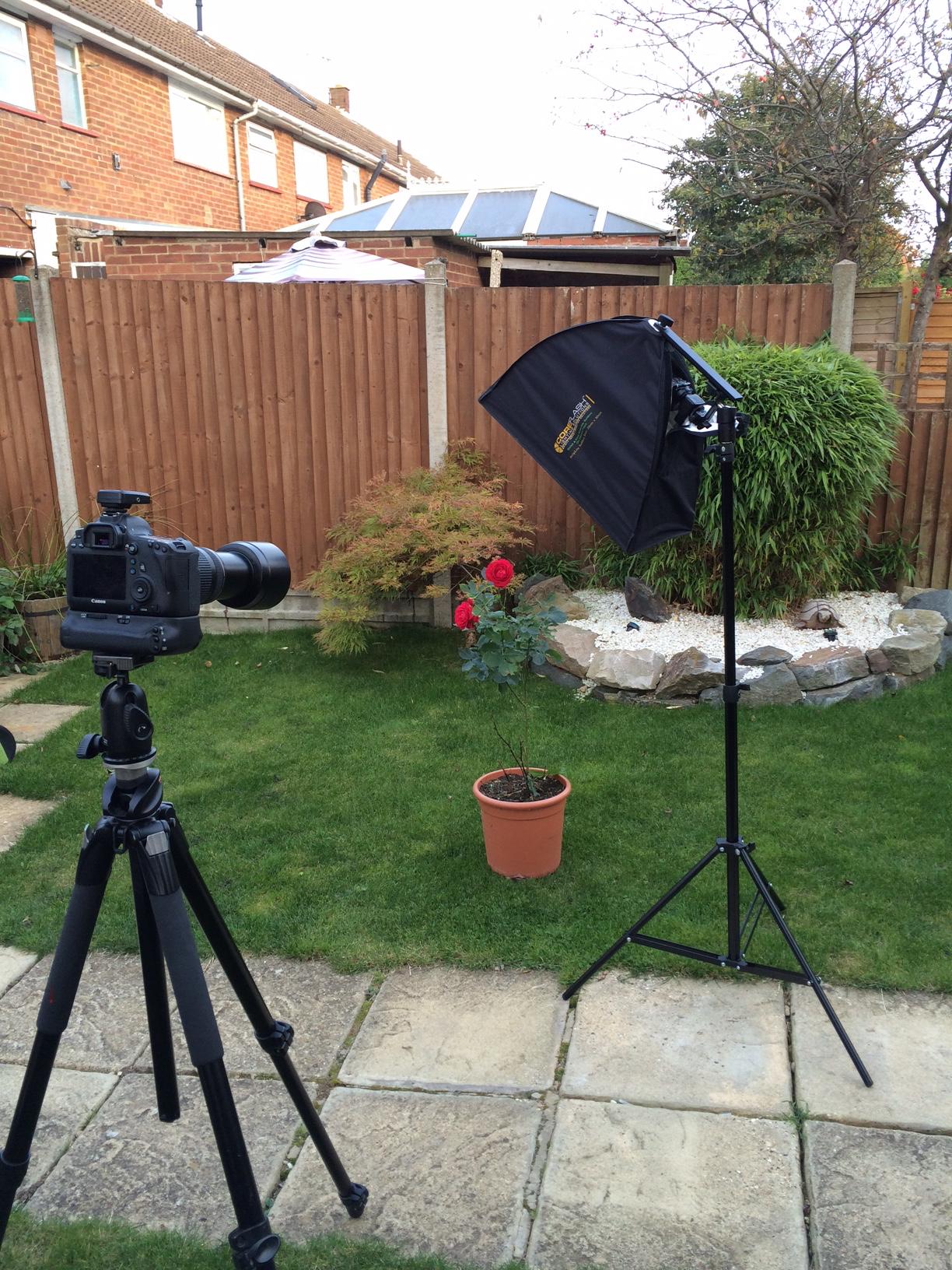 DWi Set-up shot.jpg