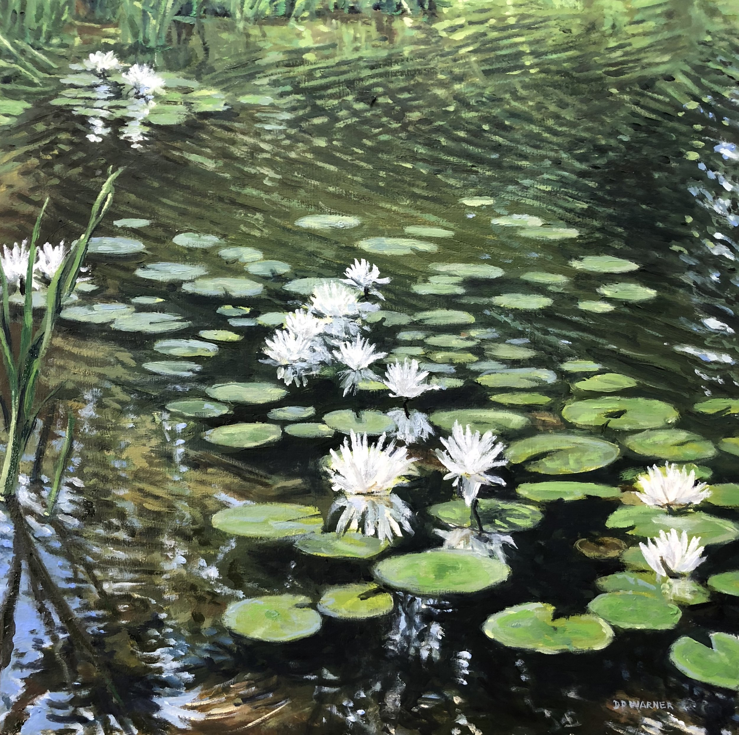 Copy of Lily Pads