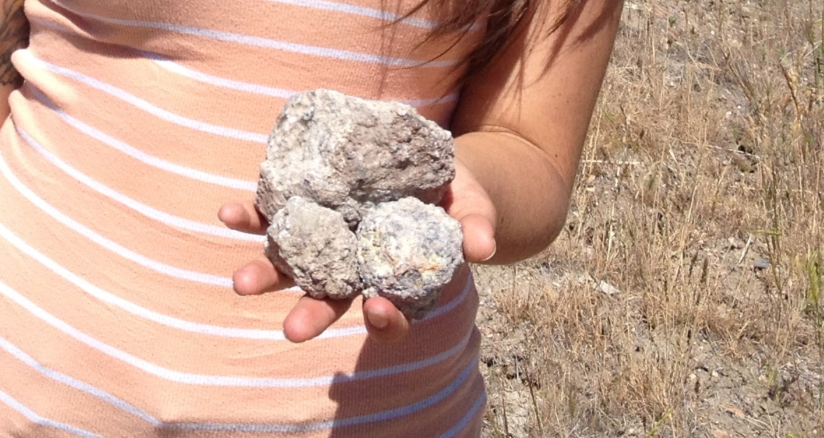 Thundereggs found in eastern Oregon