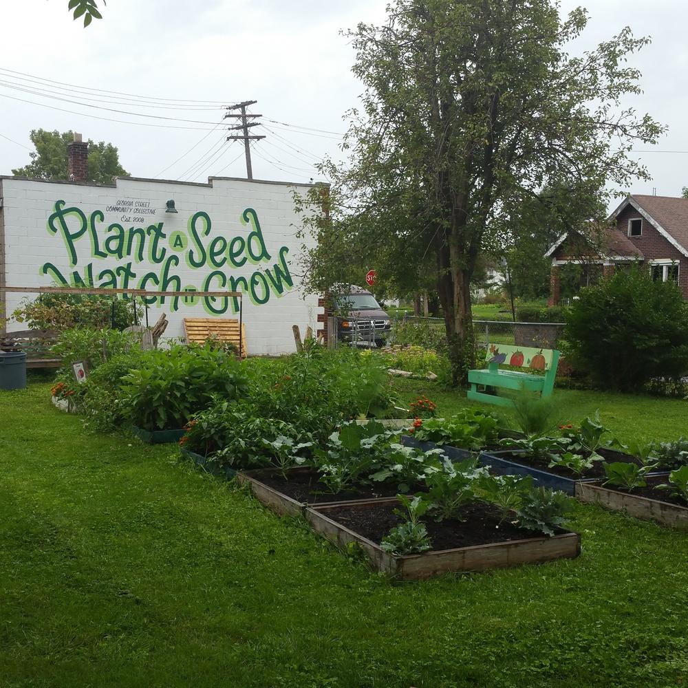 GSCC Urban Farm