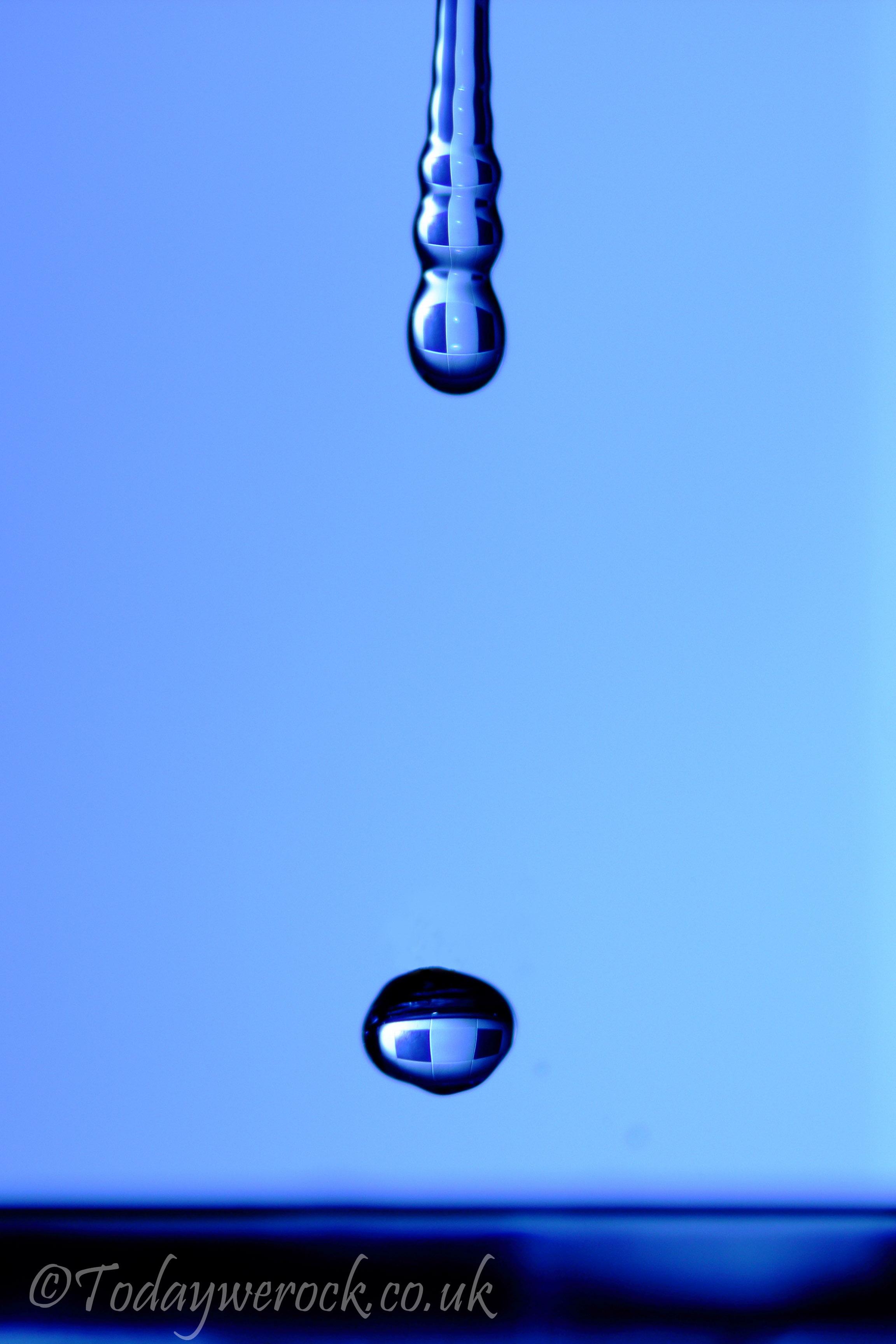 1__-25.jpg