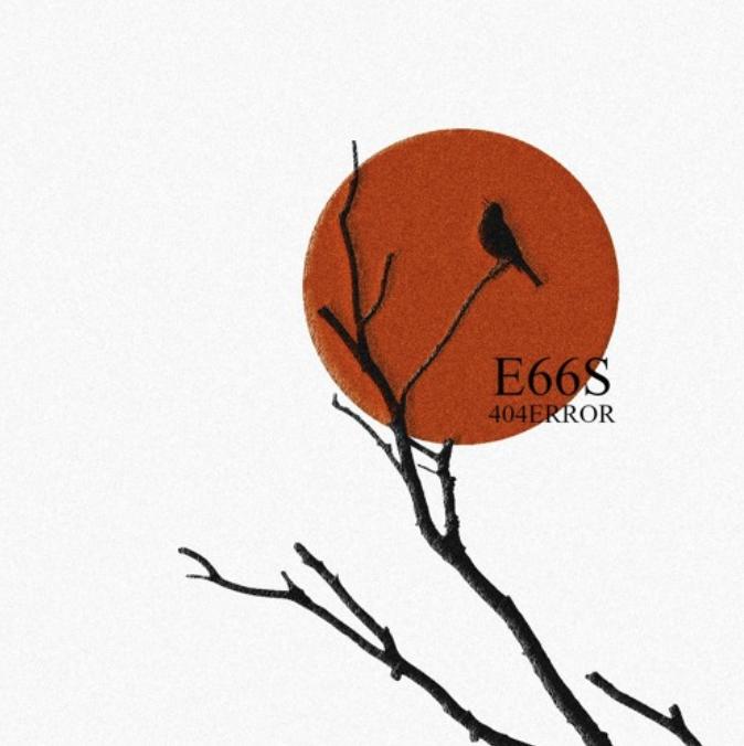 E66S: 404ERROR