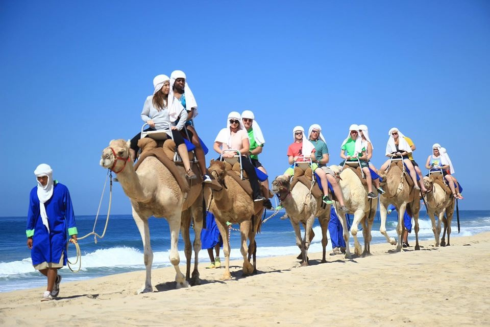 What we do: Travel and Incentive Trips