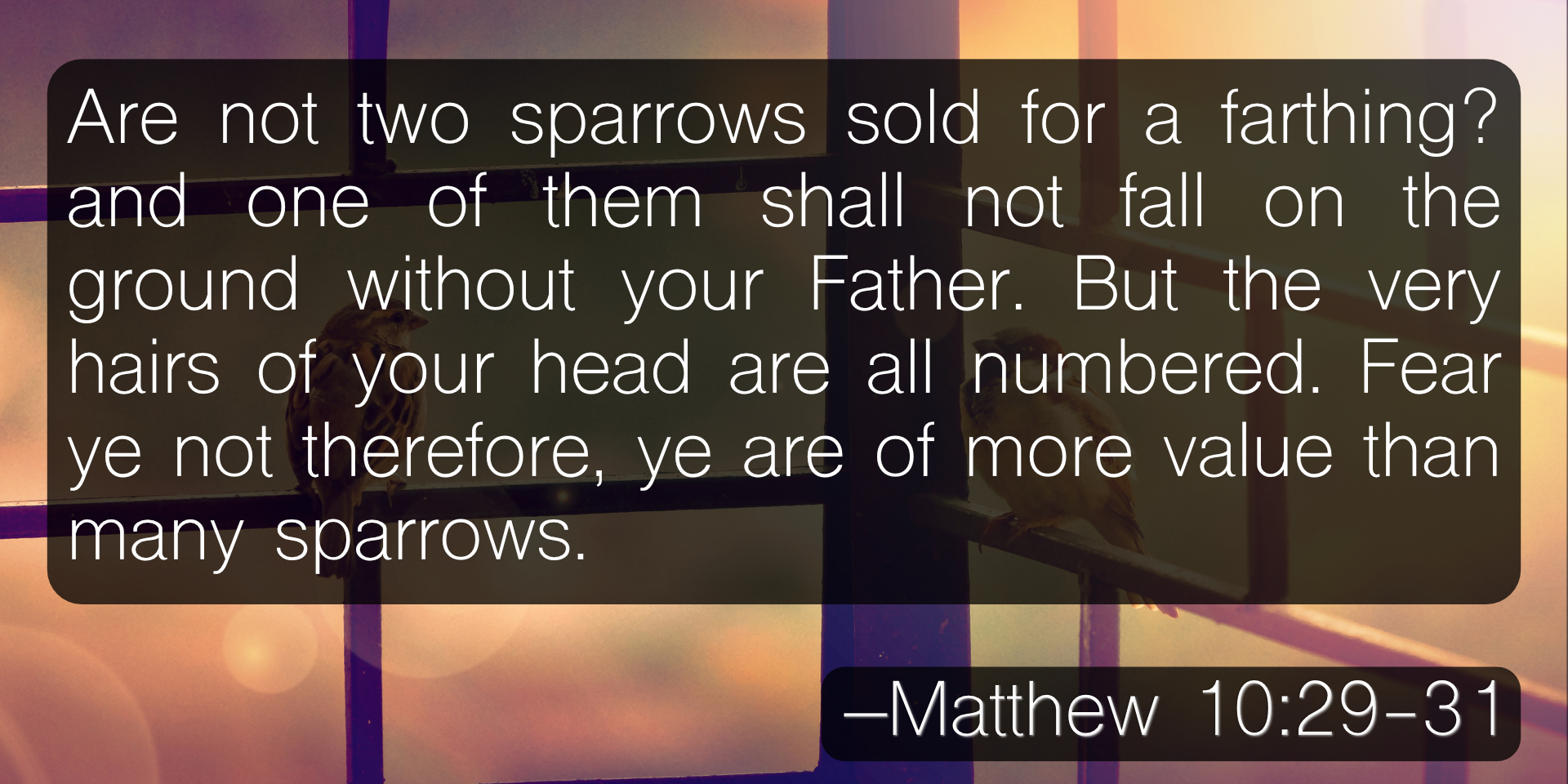 Are not two sparrows sold for a farthing? and one of them shall not fall on the ground without your Father. But the very hairs of your head are all numbered. Fear ye not therefore, ye are of more value than many sparrows. –Matthew 10:29-31