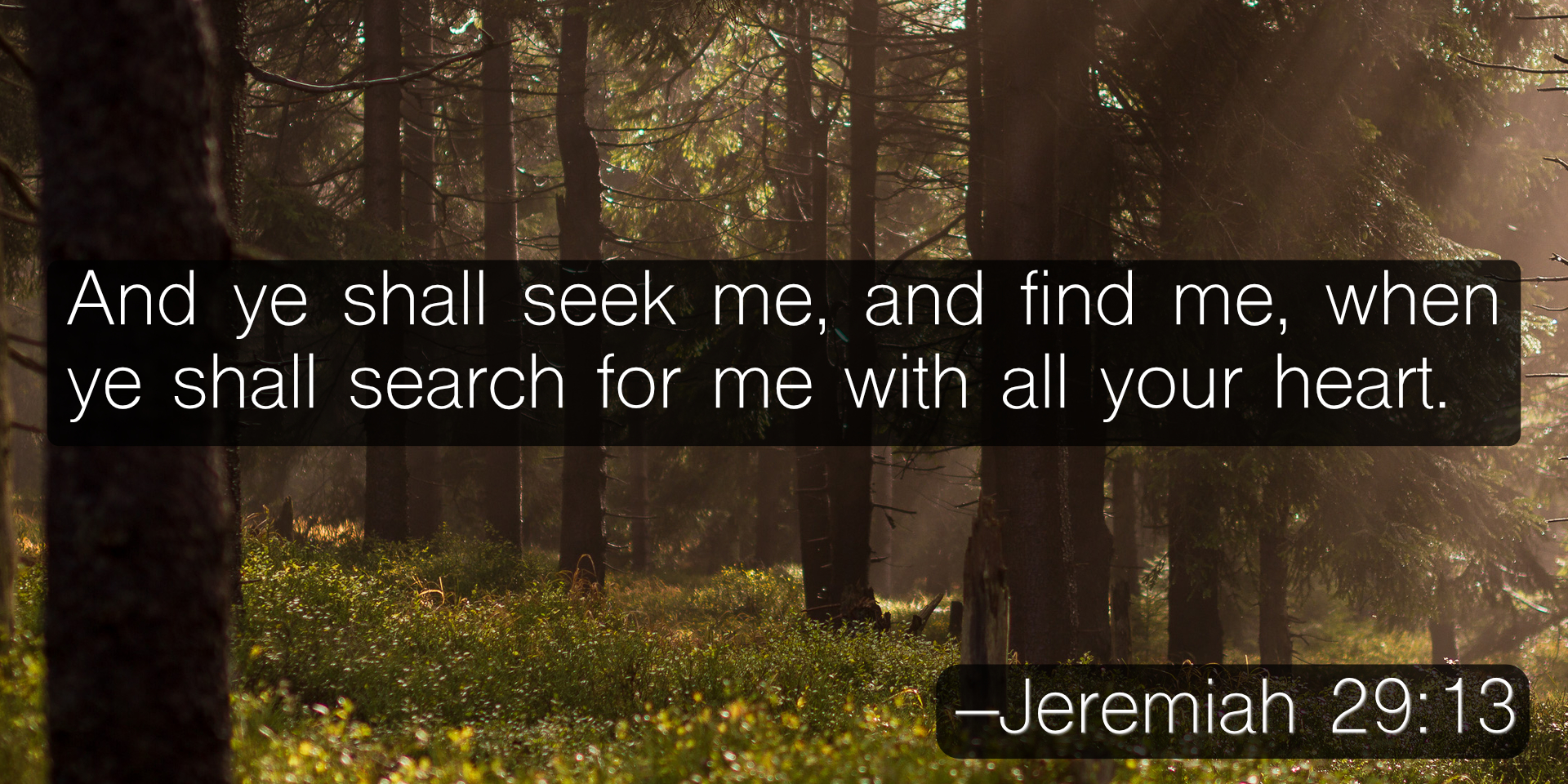 And ye shall seek me, and find me, when ye shall search for me with all your heart. –Jeremiah 29:13