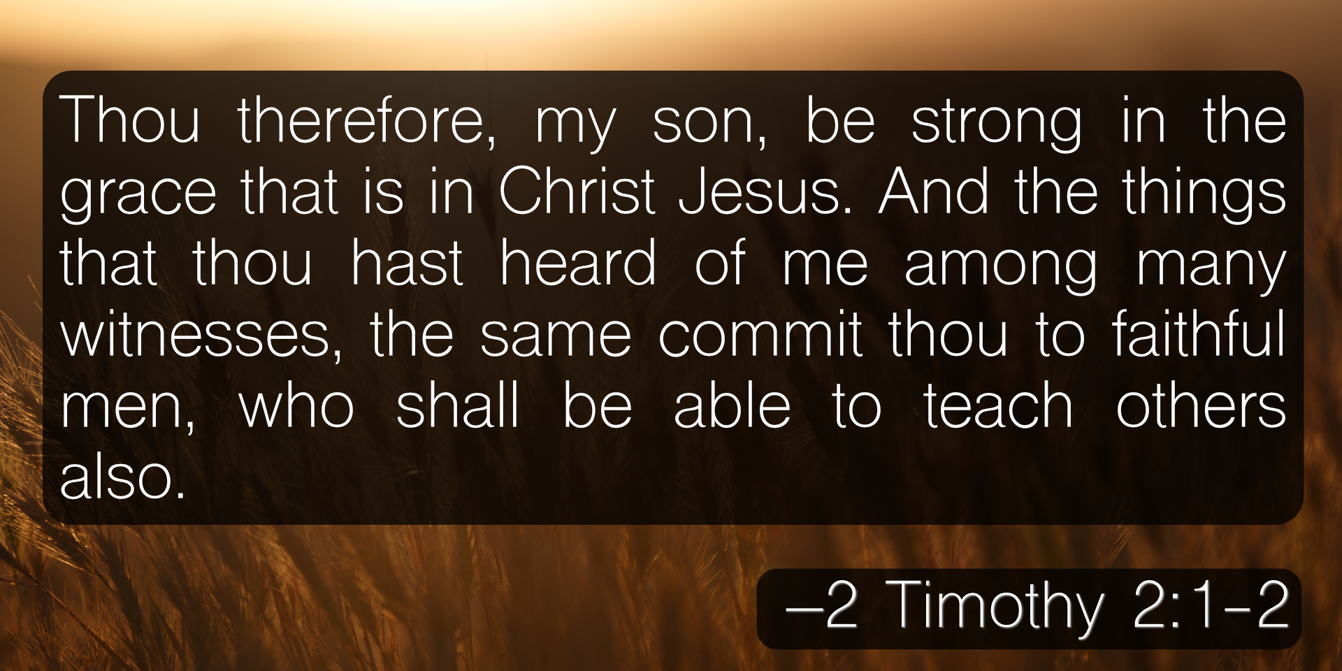 Thou therefore, my son, be strong in the grace that is in Christ Jesus. And the things that thou hast heard of me among many witnesses, the same commit thou to faithful men, who shall be able to teach others also. –2 Timothy 2:1-2