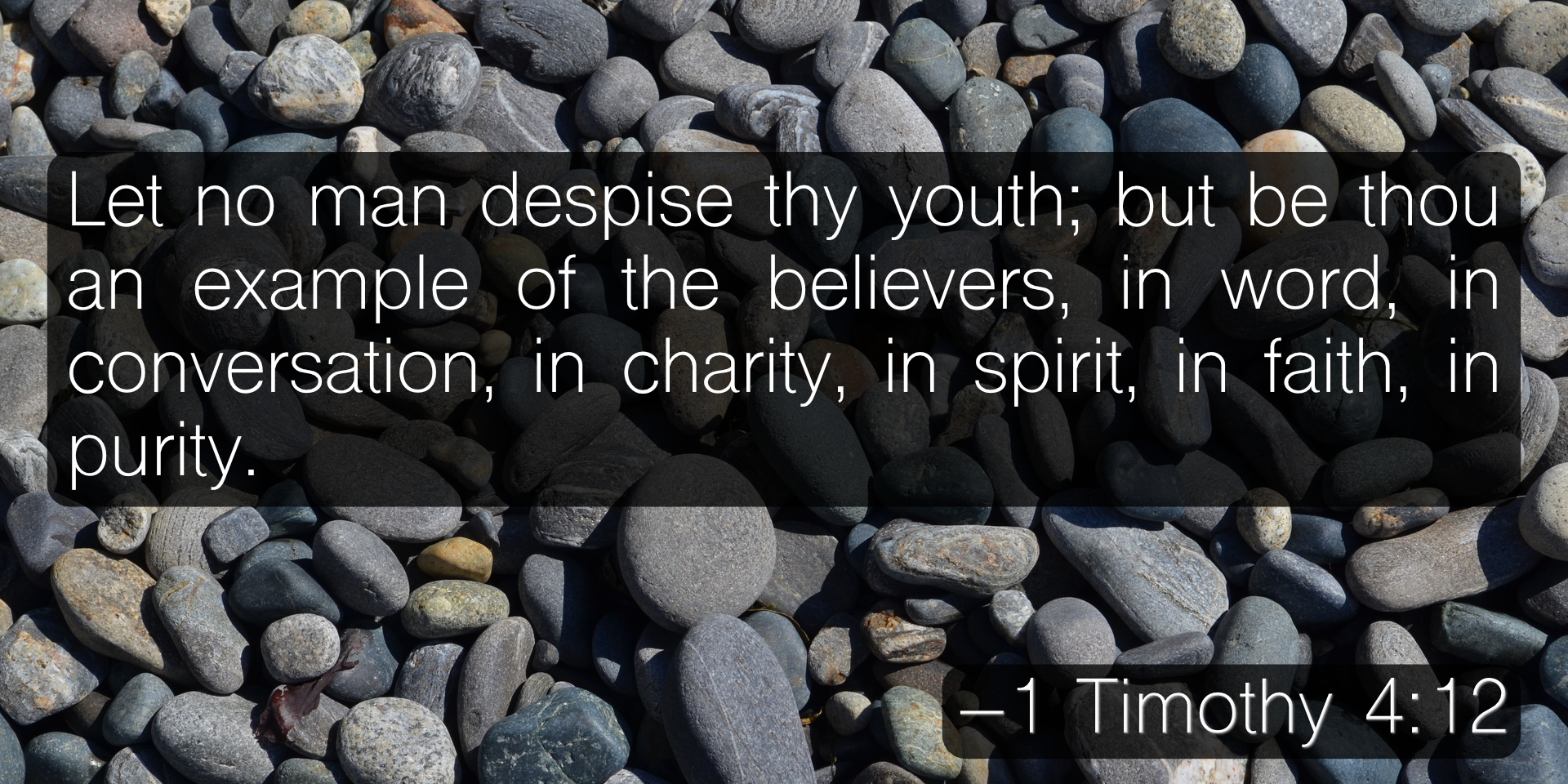 Let no man despise thy youth; but be thou an example of the believers, in word, in conversation, in charity, in spirit, in faith, in purity. –1 Timothy 4:12
