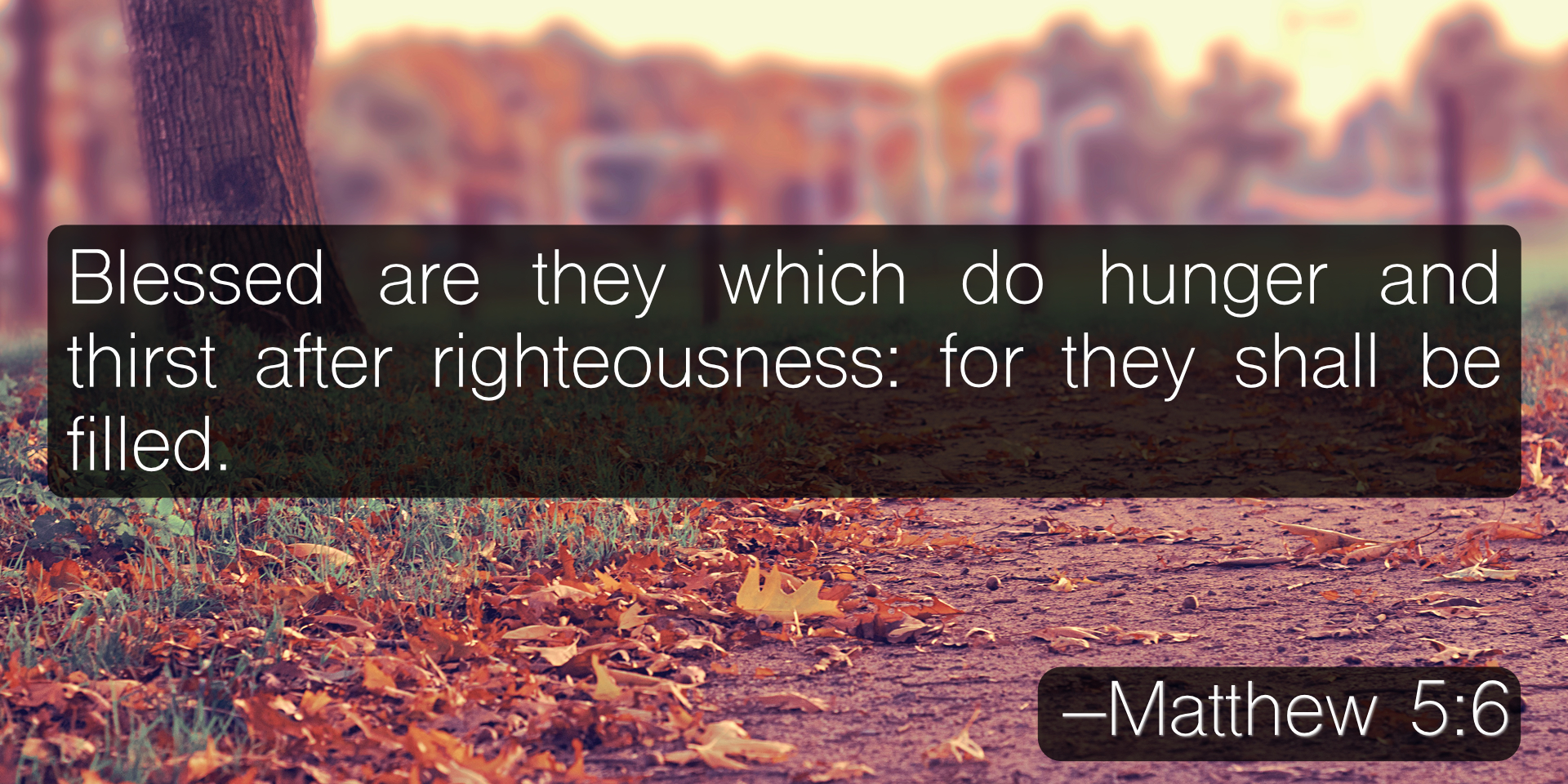 Blessed are they which do hunger and thirst after righteousness: for they shall be filled. –Matthew 5:6