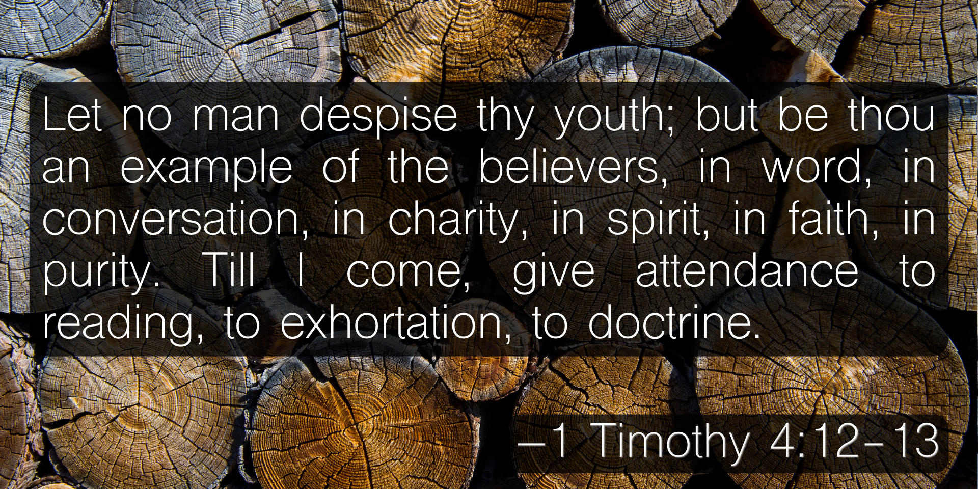 Let no man despise thy youth; but be thou an example of the believers, in word, in conversation, in charity, in spirit, in faith, in purity. Till I come, give attendance to reading, to exhortation, to doctrine. –1 Timothy 4:12-13