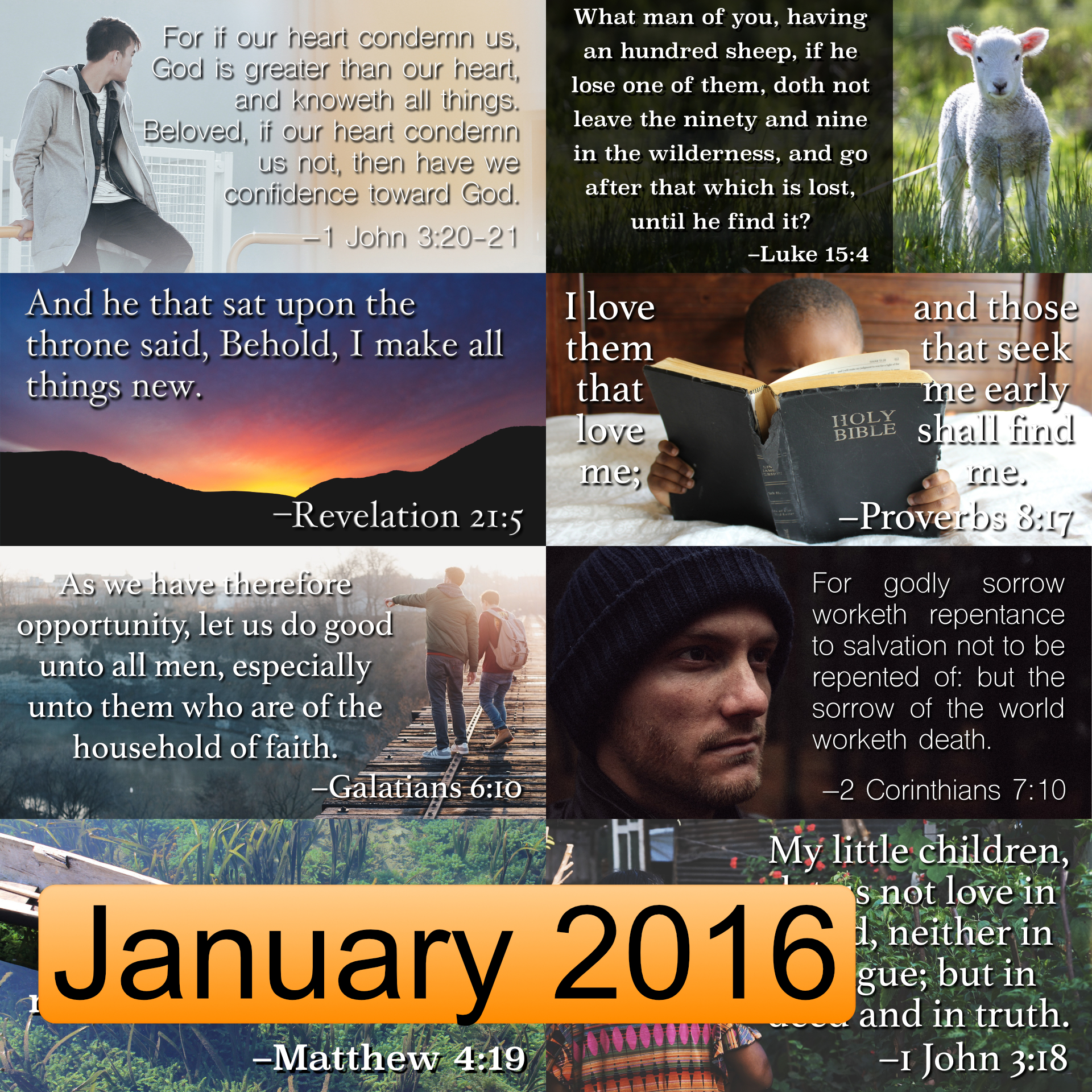 January 2016 Image Pack