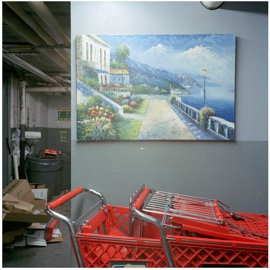"untitled 42 (shopping cart),  2011  sin título 42 (carro de compras),  2011 Digital C-type Print 16"" x 16""  Edition of 6 (+ 2 AP)  $900"