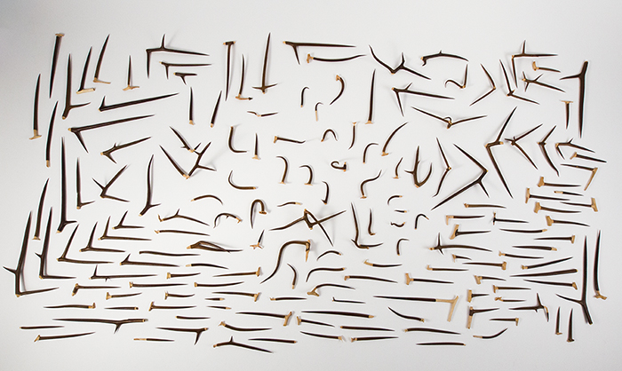 Alisha Wessler,  After the Soldiers and Strikes , Hand carved honey locust thorns, Dimensions variable