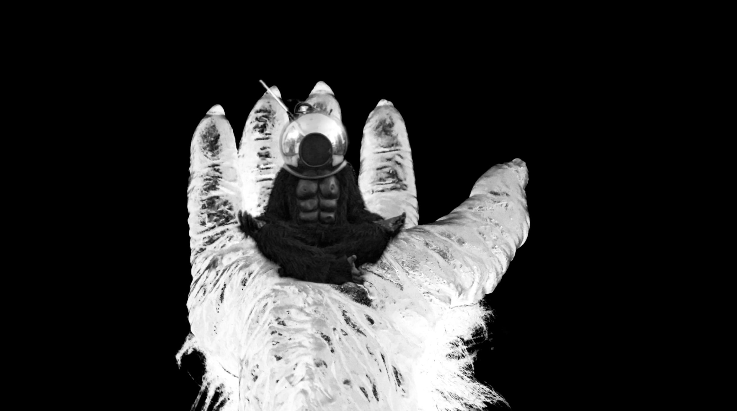 Karl Erickson, We Could Be Transcendent Apes , digital video still. 2016