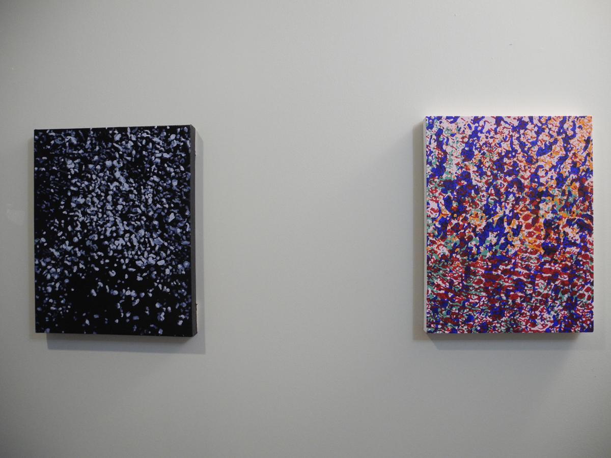 Kara Lynn Cox, Installation view