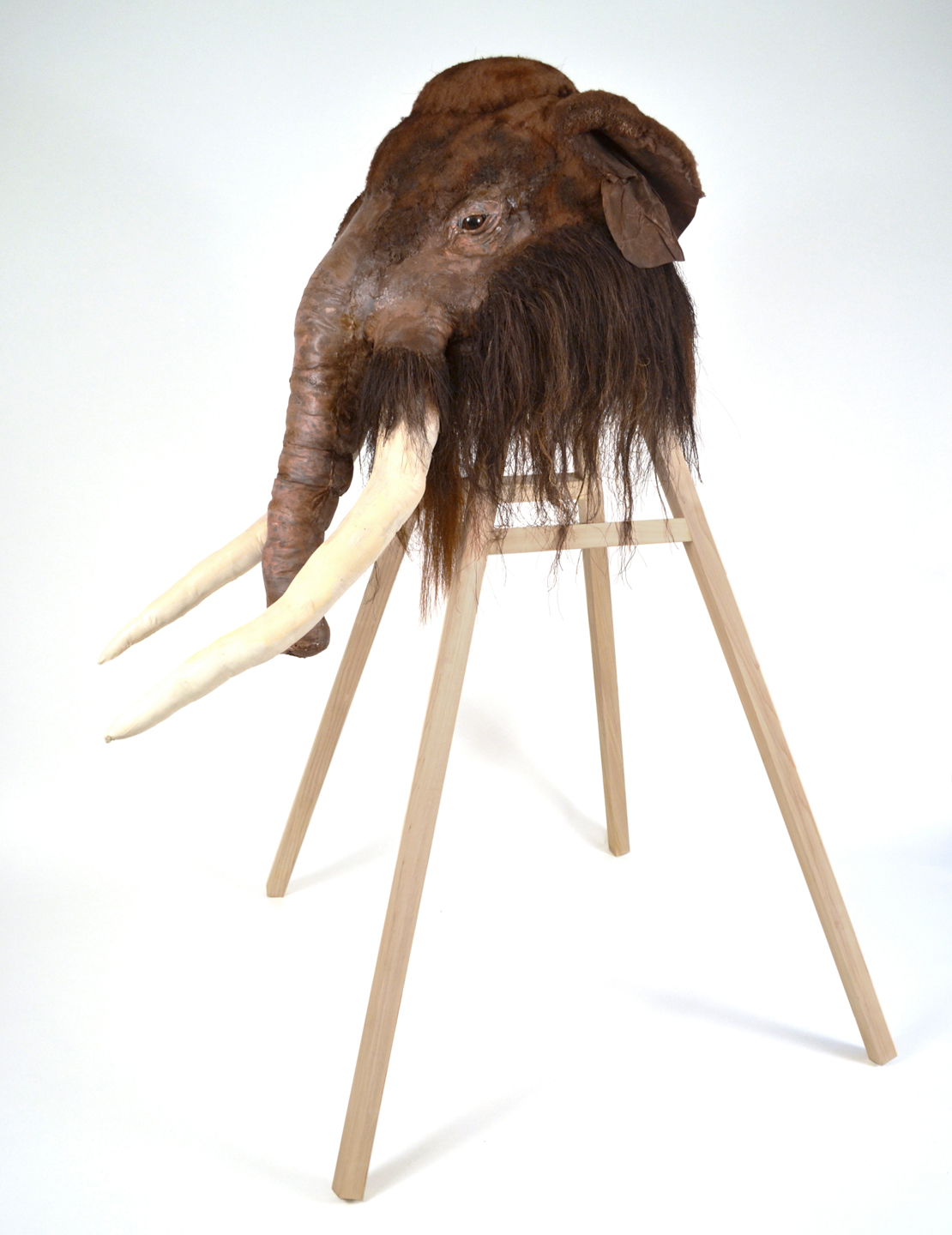 Mammuthus primigenius, Pleistocene Era Woolly Mammoth , 2014, Wood, fabric, acrylic, horsehair, and other materials, 64 x 50 x 43""