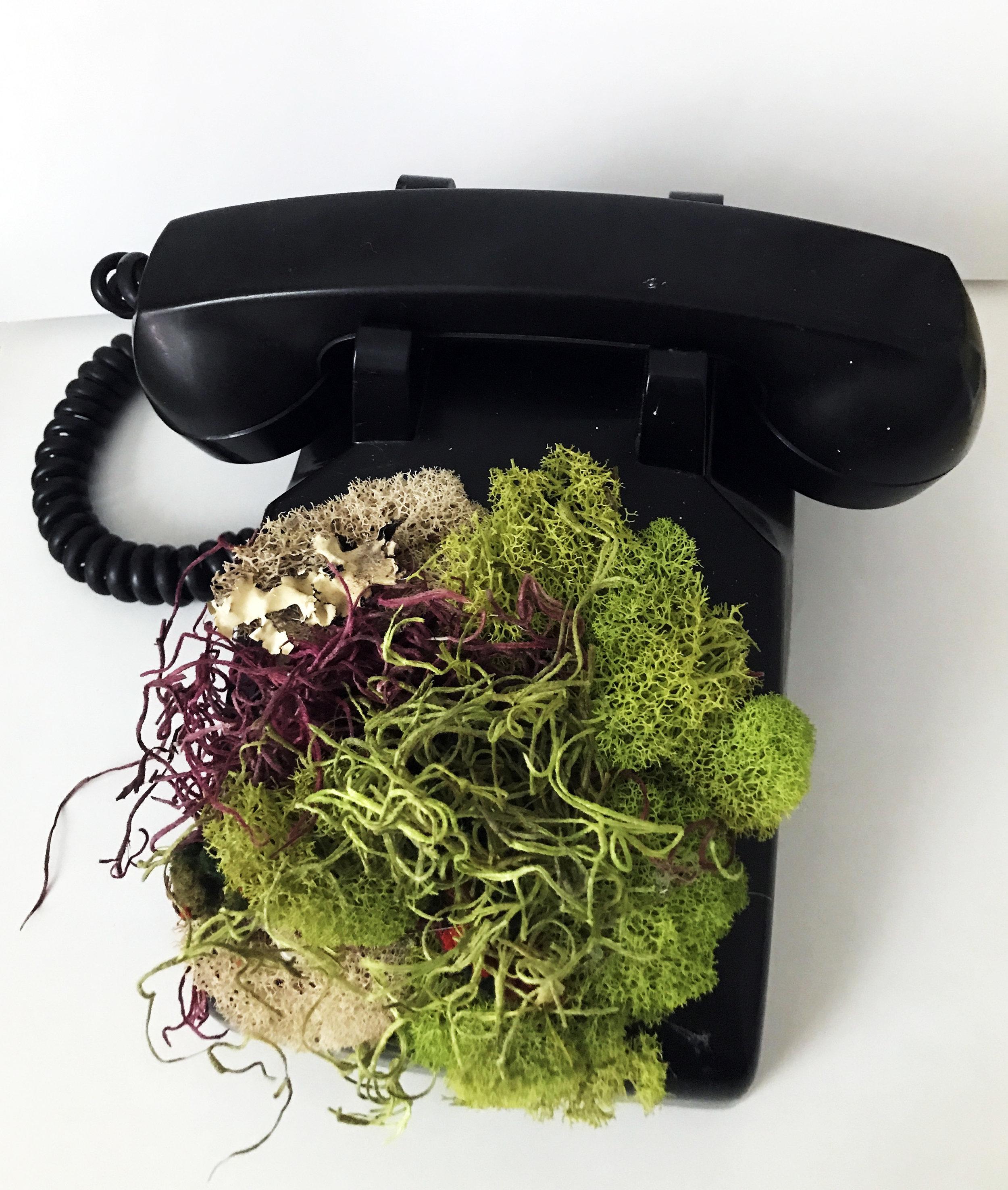 "Noelle King,  Moss Phone , 2016, moss and antique telephone, Gr. Ht. 5"", gr. length 10"", gr. width 10"""