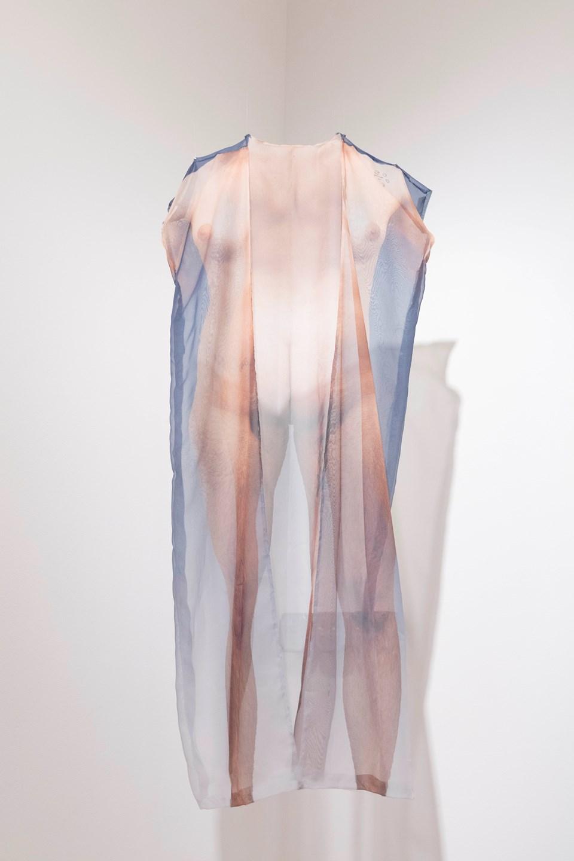 "Joseph Liatela ""Shedding (ecdysis)"" / 2016 / digital print on organza / 27 x 54 inches"