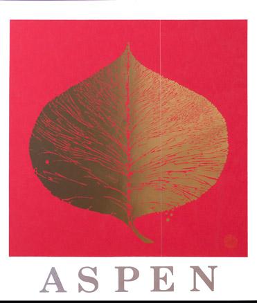 aspen16.jpg