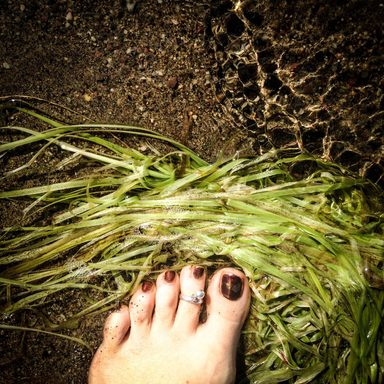 Siren's Toes