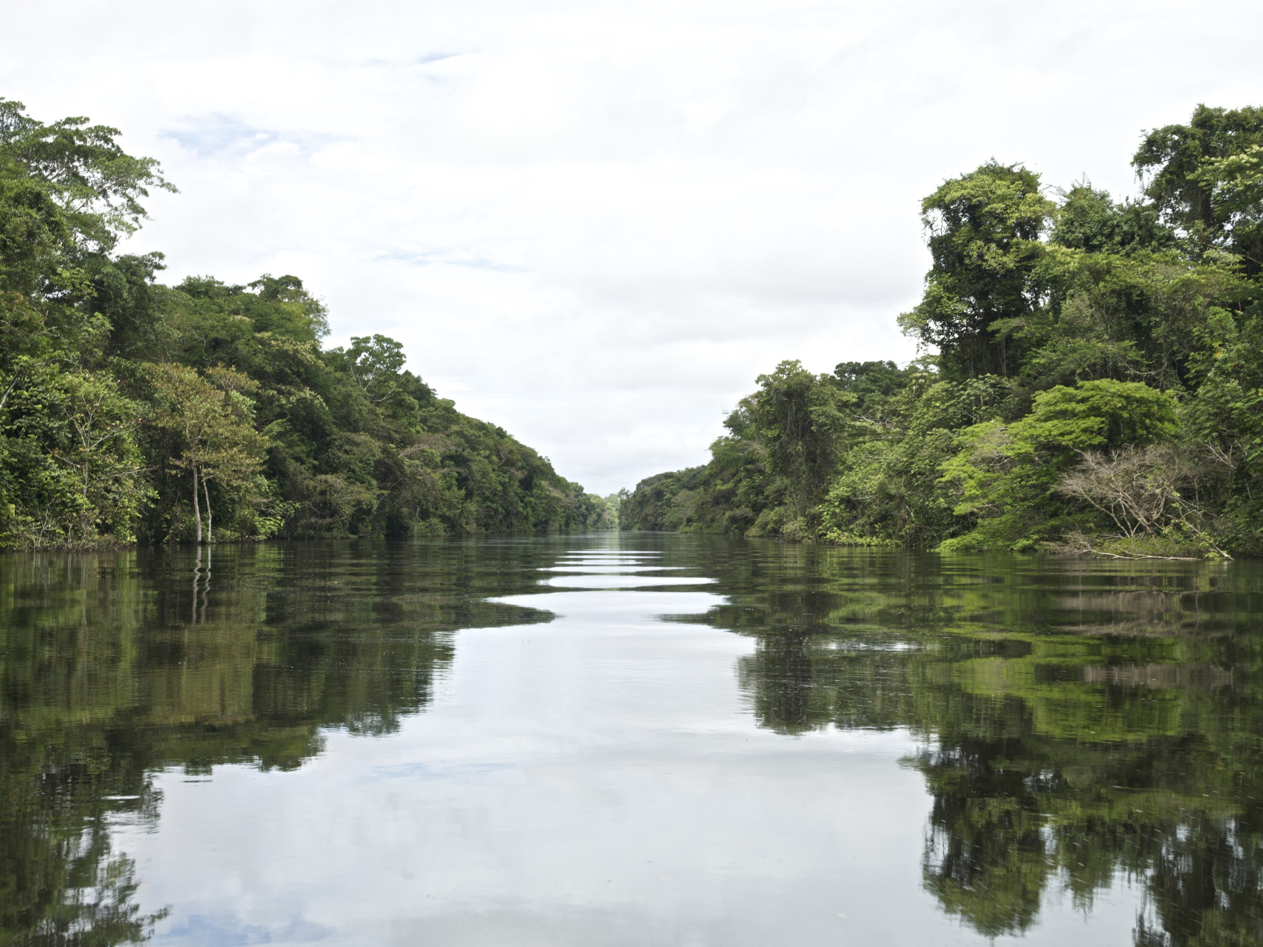 AMAZONAS III, PERU