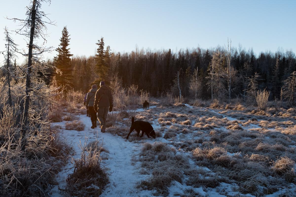 PiperHanson_AlaskaWinter-4.jpg