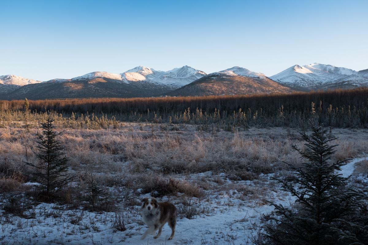 PiperHanson_AlaskaWinter-6.jpg