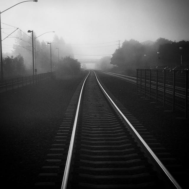 foggy tracks.jpg