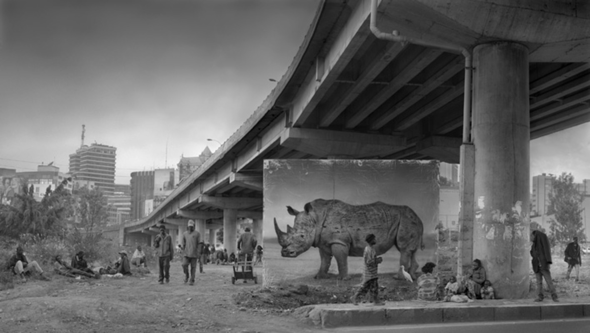 Underpass with Rhino and Egret (Photo by Nick Brandt)