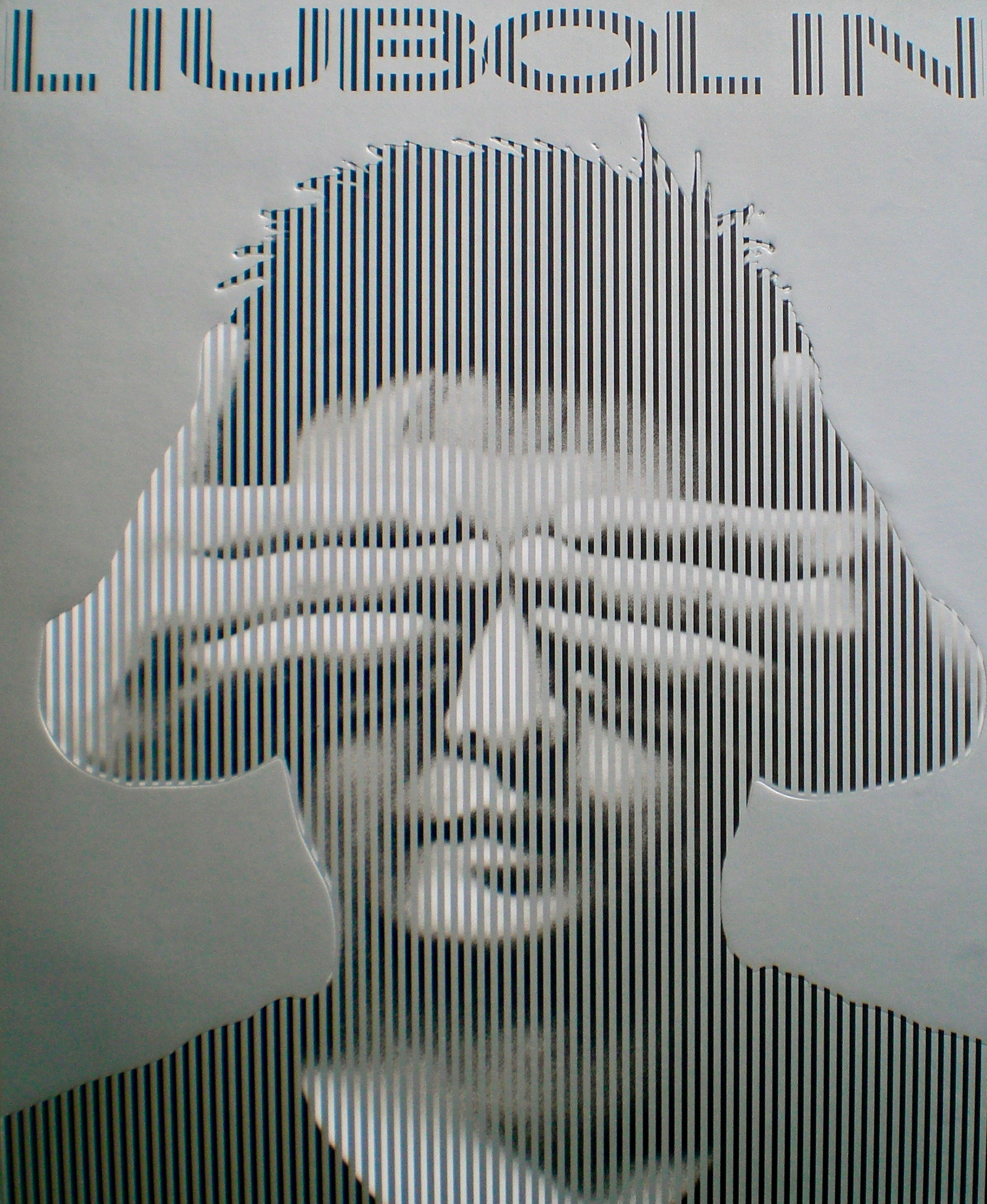 Cover of Liu Bolin's collection of works until 2008.