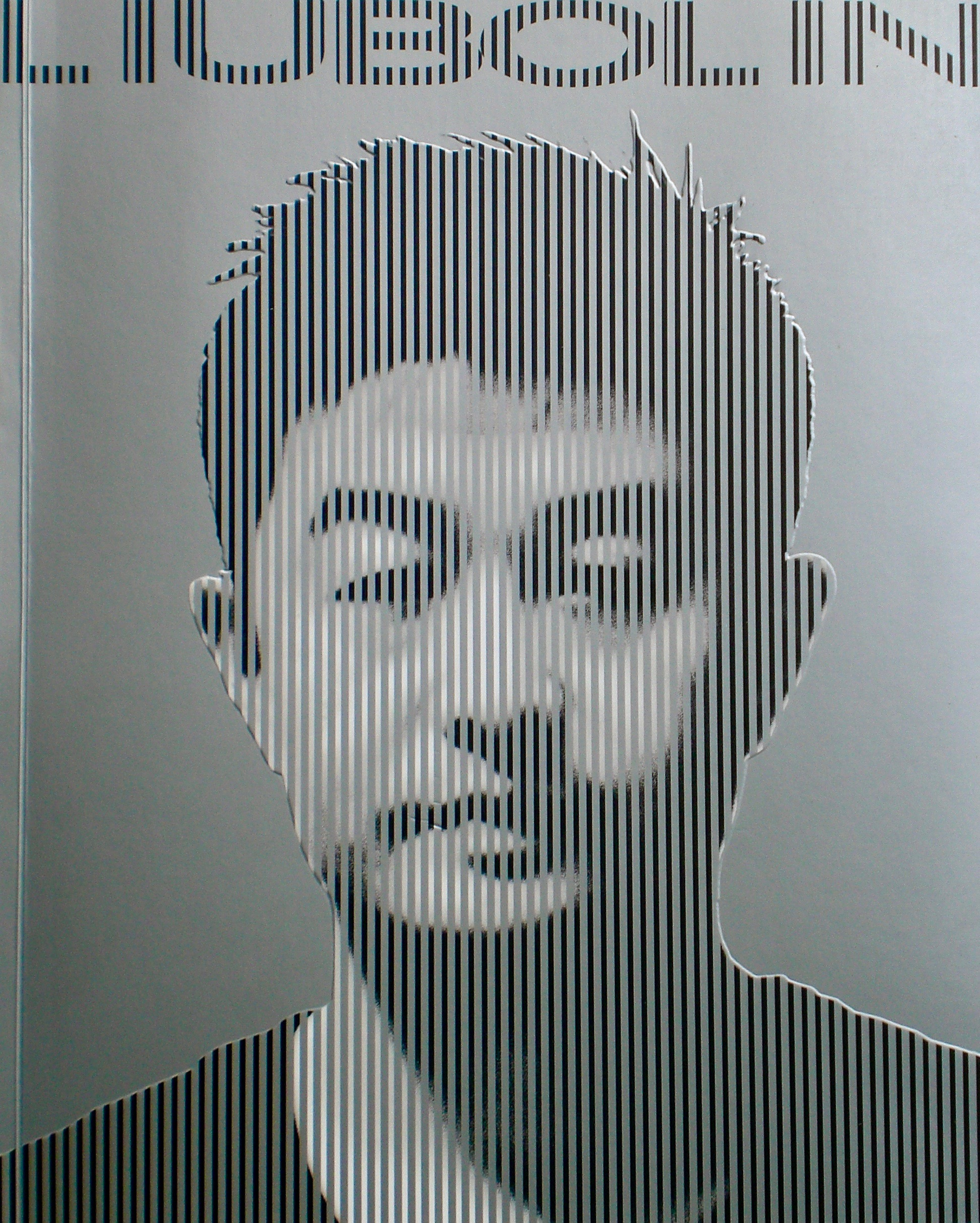 Cover of a 2008 book containing Liu's work up to that year.