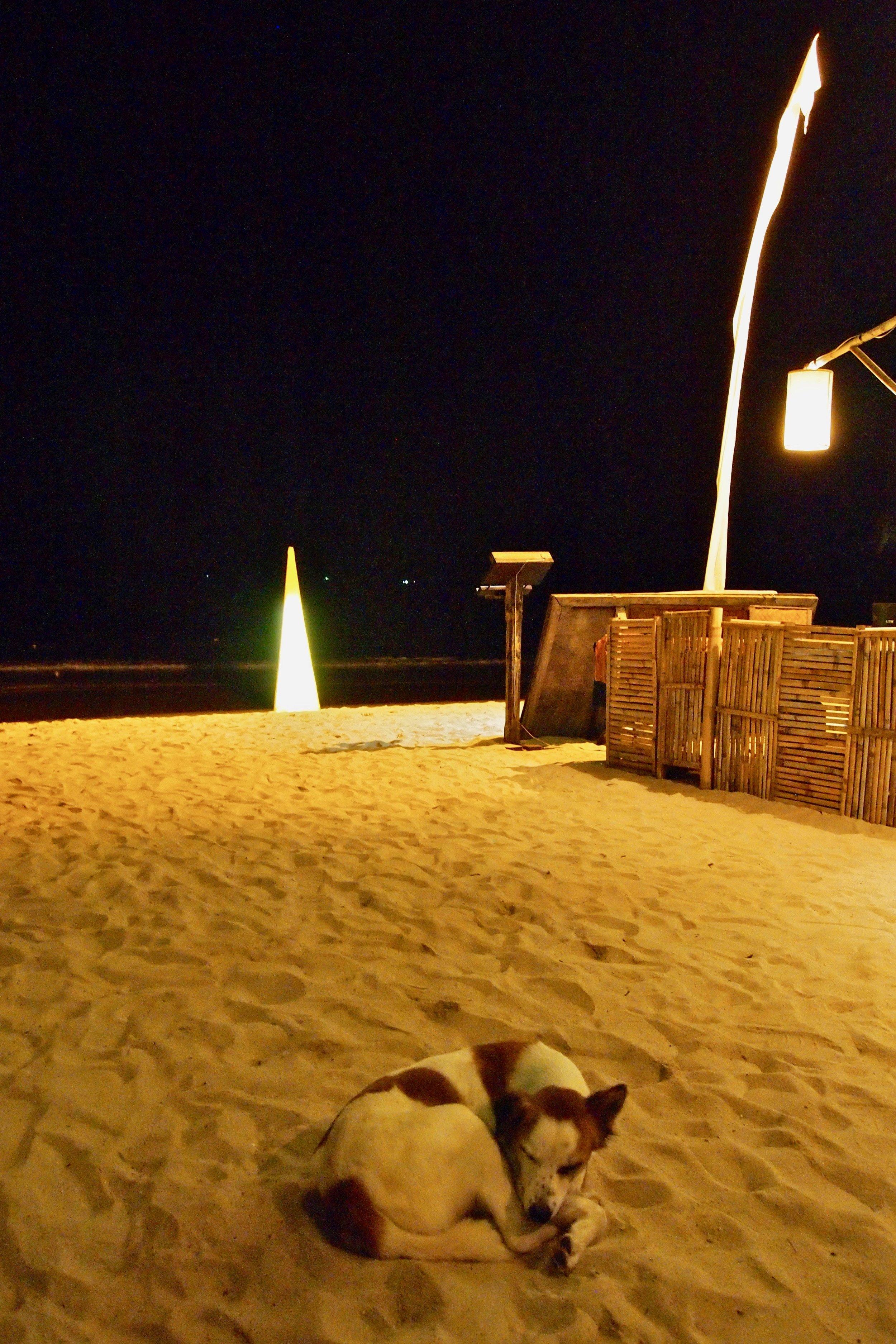 Beach in Thailand. (C) Remko Tanis